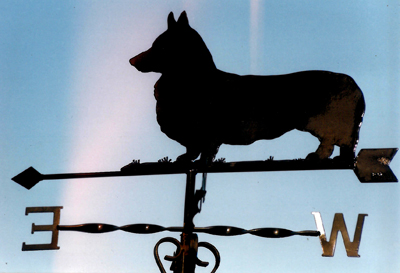 Corgi weather vane