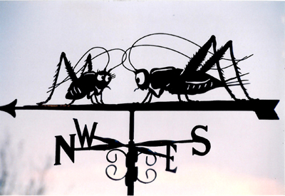 Crickets weather vane