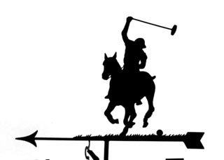Polo weather vane
