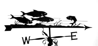 Shoal weather vane