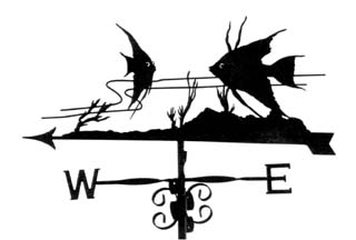 Angel Fish weathervane