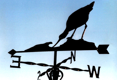 Avocet weather vane