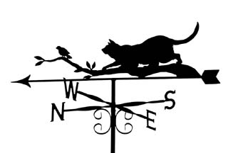 Cat on branch with bird weathervane
