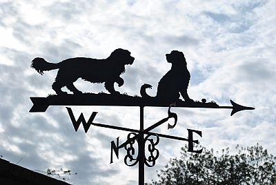 Cockapoos weather vane