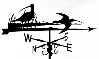 Curlews weather vane