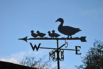Duck and ducklings weathervane