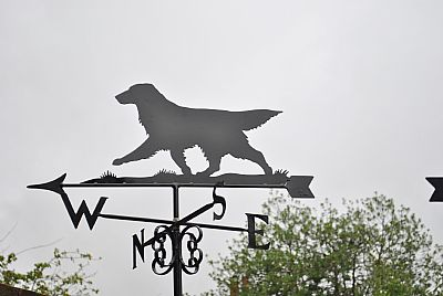 Flat Coat Retriever weather vane