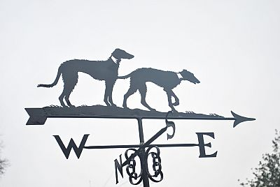 Lurchers weather vane