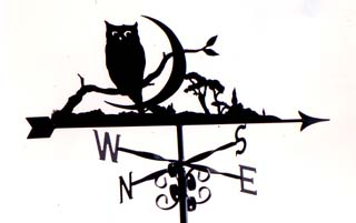 Owl with Crescent moon weather vane