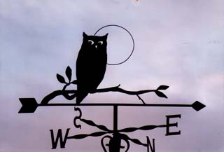 Owl on Branch weather vane