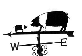 Pair of saddleback pigs weathervane