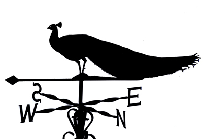 Peacock weather vane