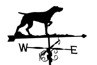 Pointer weather vane