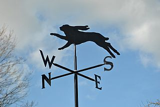 Hare p and s weather vane