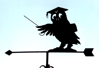 Owl Teaching weathervane