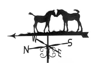Two Foals weathervane