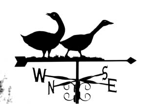 Two geese weathervane