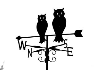 Owls on arrow weathervane